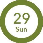 7/29 Sun