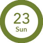 8/23 Sun