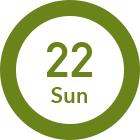8/22 Sun
